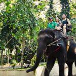 Bali Bakas Elephant Tour