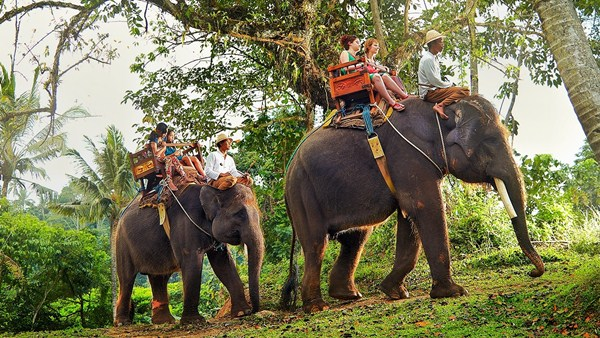 ATV Ride with Elephant Ride Spa Bali tour