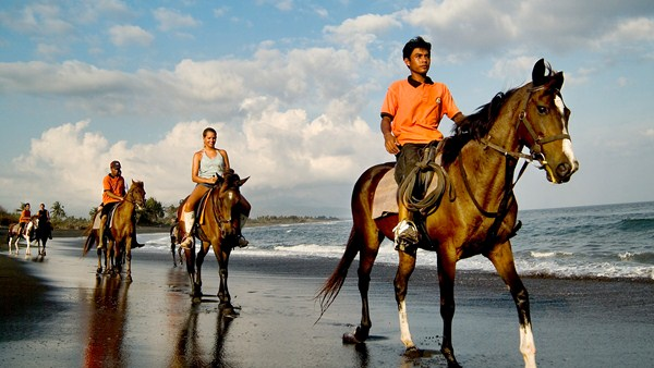 Bali ATV Ride + Horse Riding + Spa