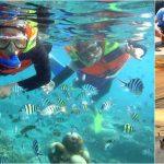 Snorkeling + Uluwatu, Dinner Bali Tour