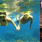 Snorkeling + Ubud, Kecak Fire Dance, Dinner Bali Tour