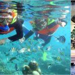 Snorkeling + Ubud, Tanah Lot Sunset Bali Tour
