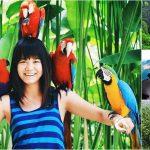 Bali Bird Park + Volcano, Ubud Tour