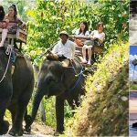 Bali Elephant Ride with Rafting, Tanah Lot Tour