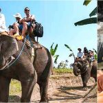 Bali Elephant Ride + Rafting, Spa Tour