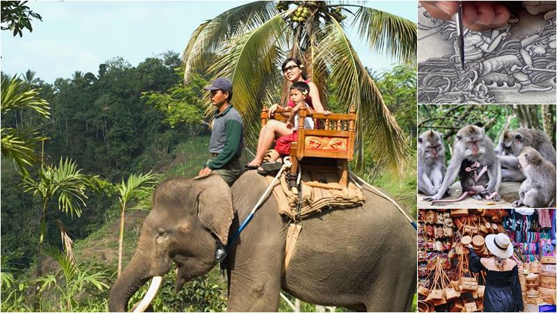 Bali Elephant Ride + Ubud Arts Shopping Tour