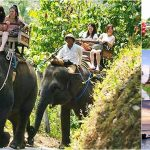 Bali Elephant Ride + Tanah Lot Sunset Tour