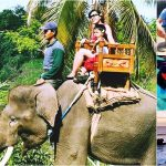 Bali Elephant Ride + Snorkeling, Tanah Lot Tour