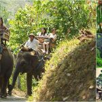 Bali Elephant Ride + Bird Park, Ubud Tour