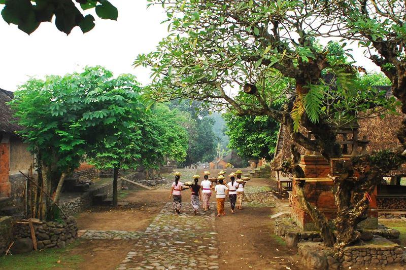 Tenganan Village Balimagictour